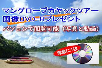 画像DVD-R