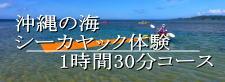 海のシーカヤック体験